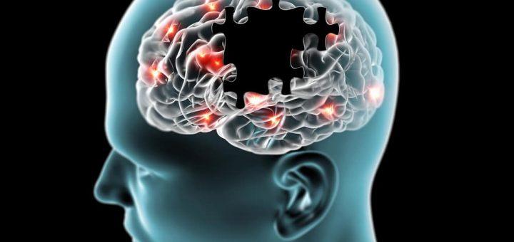maladies neuro dégénératives